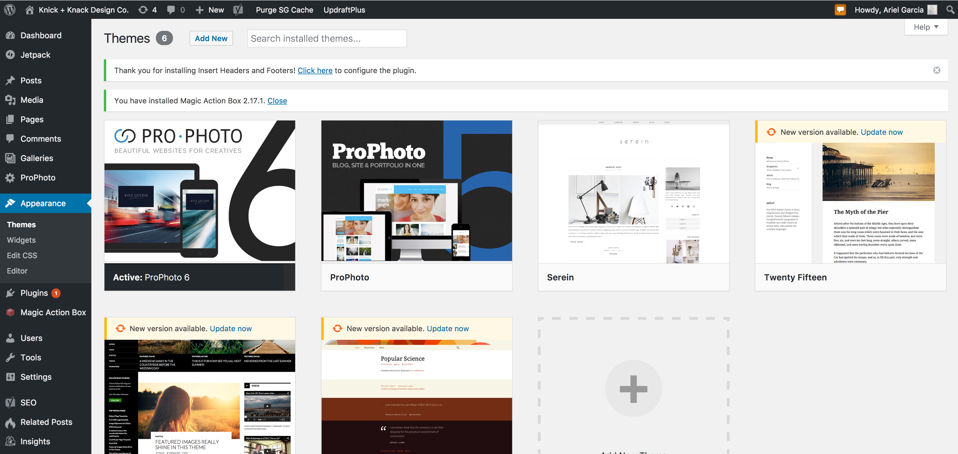 Learn how to make a WordPress blog with Siteground, choosing your theme